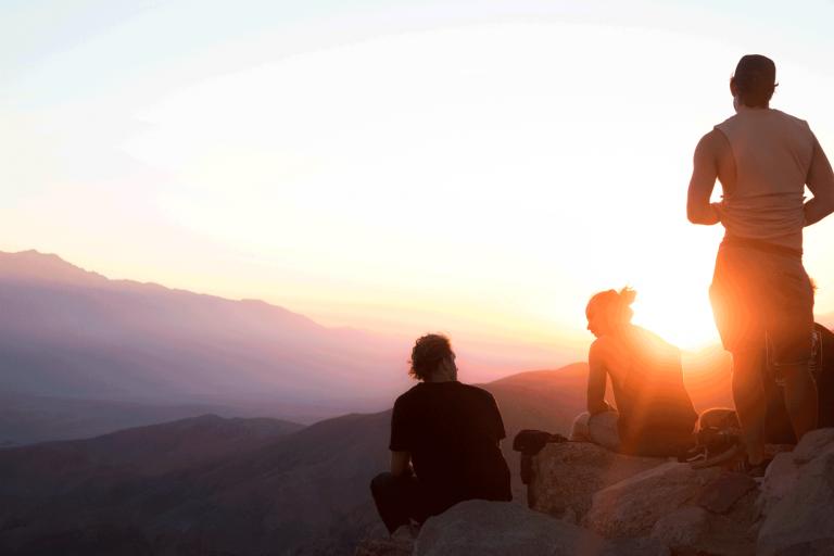 Business-Coaching zur Persönlichkeits- & Team-Entwicklung